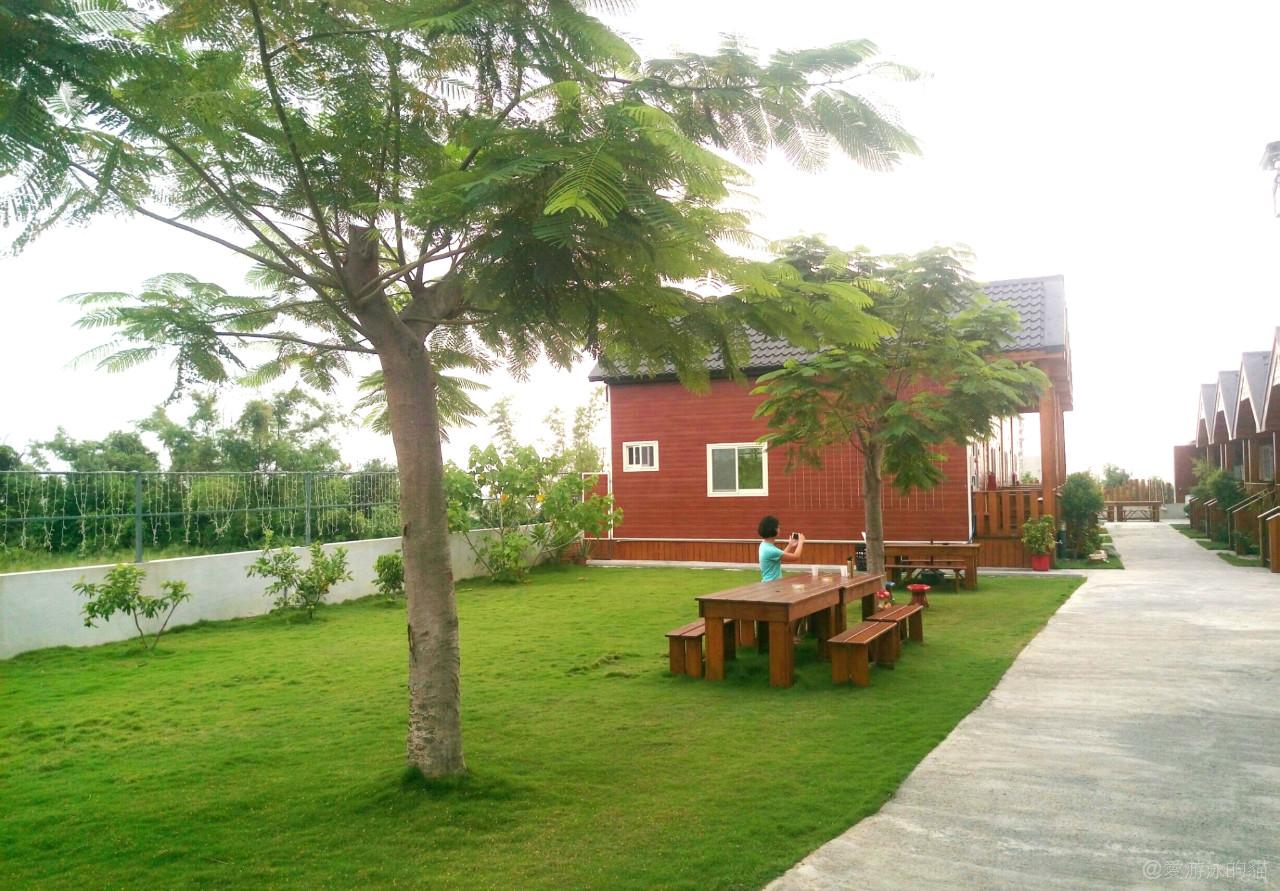 小琉球木屋民宿源和居-大草坪吃早餐