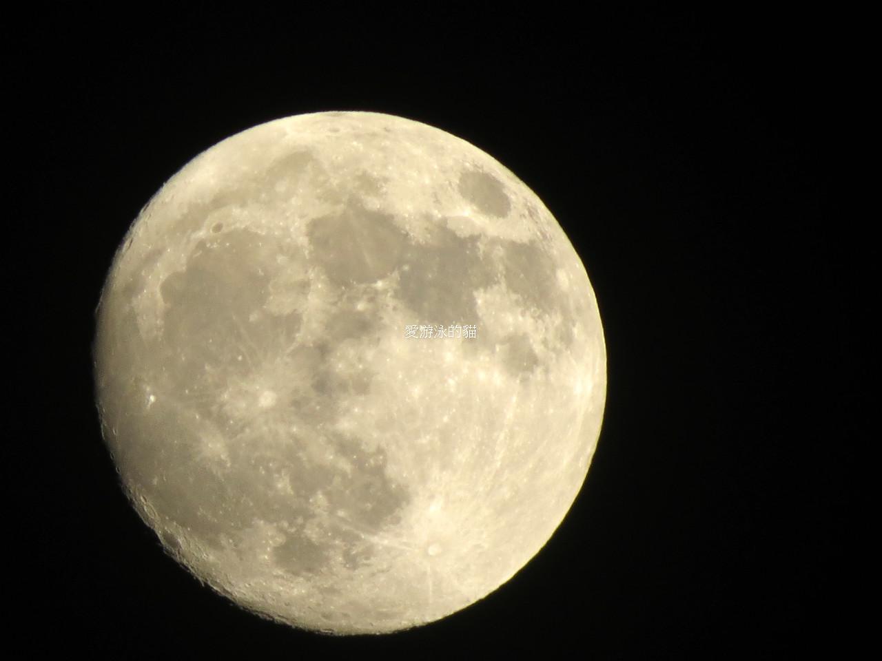 Cannon類單拍出來的中秋節的月亮