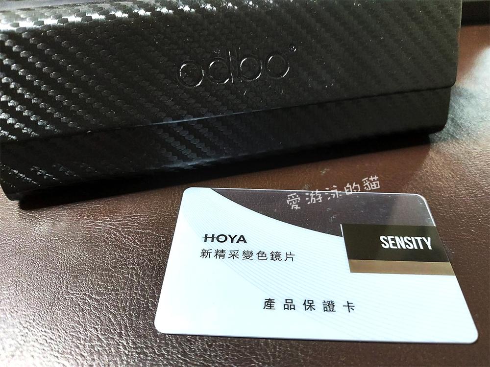 進口全視線品牌HOYA, 台中配全視線鏡片心得, 國產與進口全視線價格
